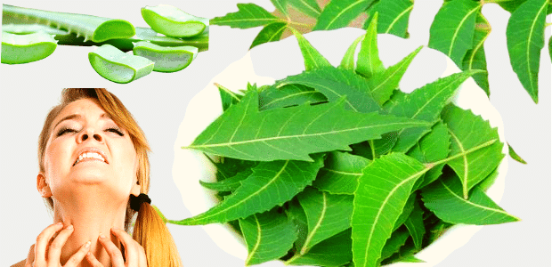 Homemade Remedies to Deal with Skin Allergies