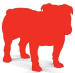 bull-guard