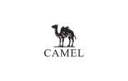 Camel Store Logo