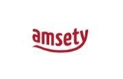 Amsety Logo
