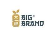 BigBrand Satay Logo