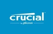 Crucial FR Logo