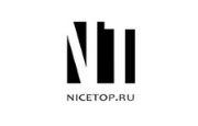 NiceTop RU logo